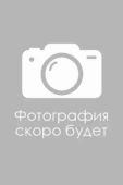 Салина Татьяна Владимировна : Заместитель директора по административно-хозяйственной части